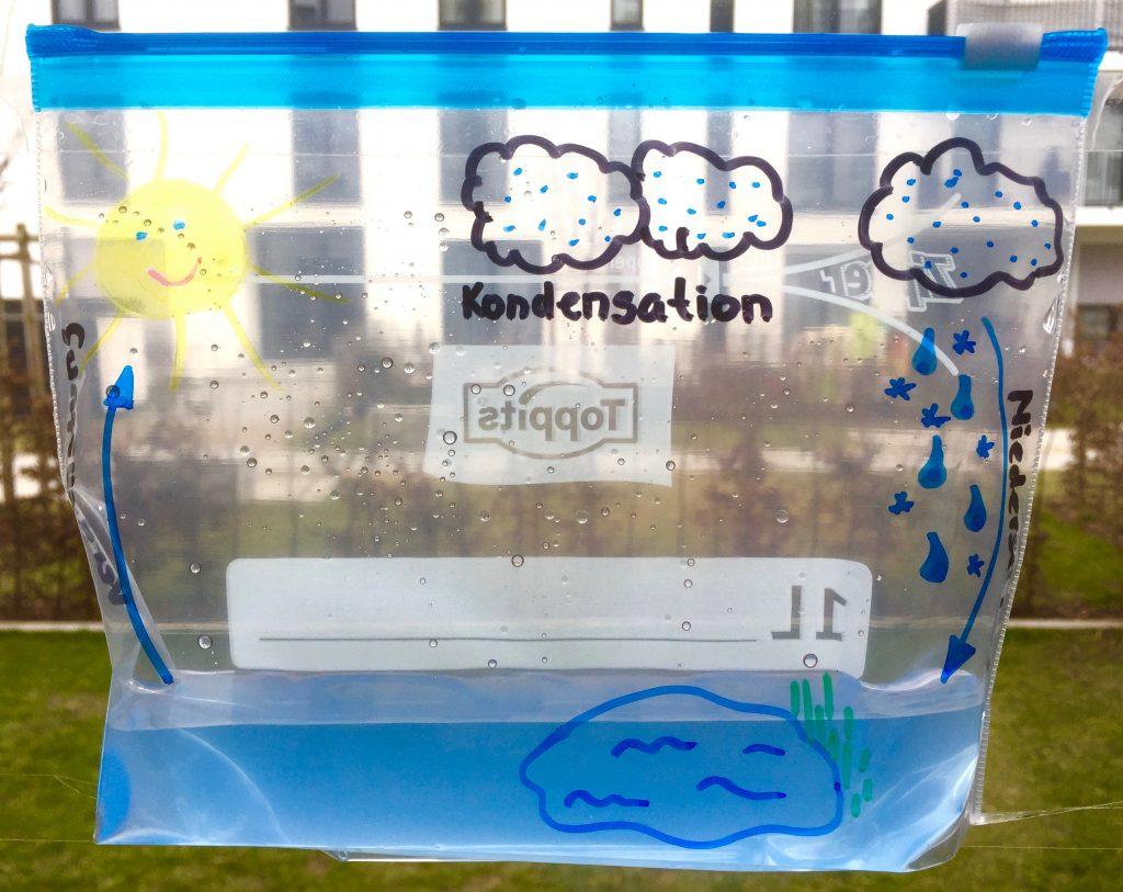 http://blog.forschenfuerkinder.de/2017/09/02/blogparade-die-n…-und-meine-sinne/ Wasserkreislauf #Wasserkreislauf #Kondensation #Wolken