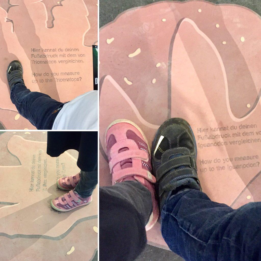 Fossil_Fußabdrücke_Größenvergleich